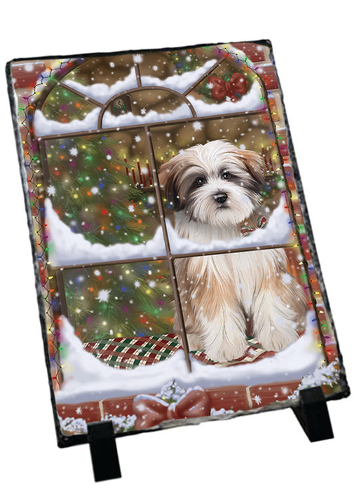 Please Come Home For Christmas Tibetan Terrier Dog Sitting In Window Sitting Photo Slate SLT57569