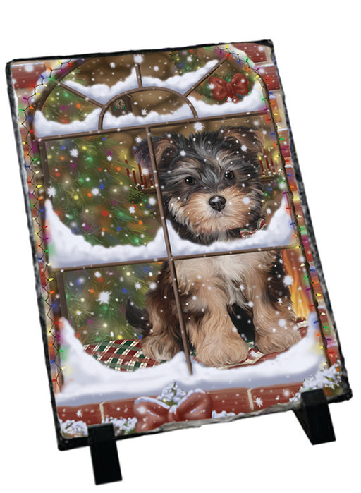 Please Come Home For Christmas Yorkipoo Dog Sitting In Window Sitting Photo Slate SLT57571