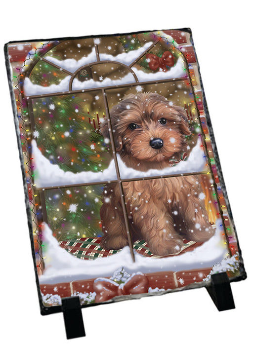 Please Come Home For Christmas Yorkipoo Dog Sitting In Window Sitting Photo Slate SLT57573
