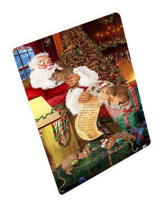 "Abyssinian Cats And Kittens Sleeping With Santa Magnet Small (5.5"" x 4.25"")"