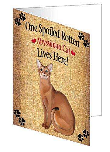 Abyssinian Spoiled Rotten Cat Greeting Card