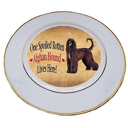 Afghan Hound Spoiled Rotten Dog Porcelain Plate