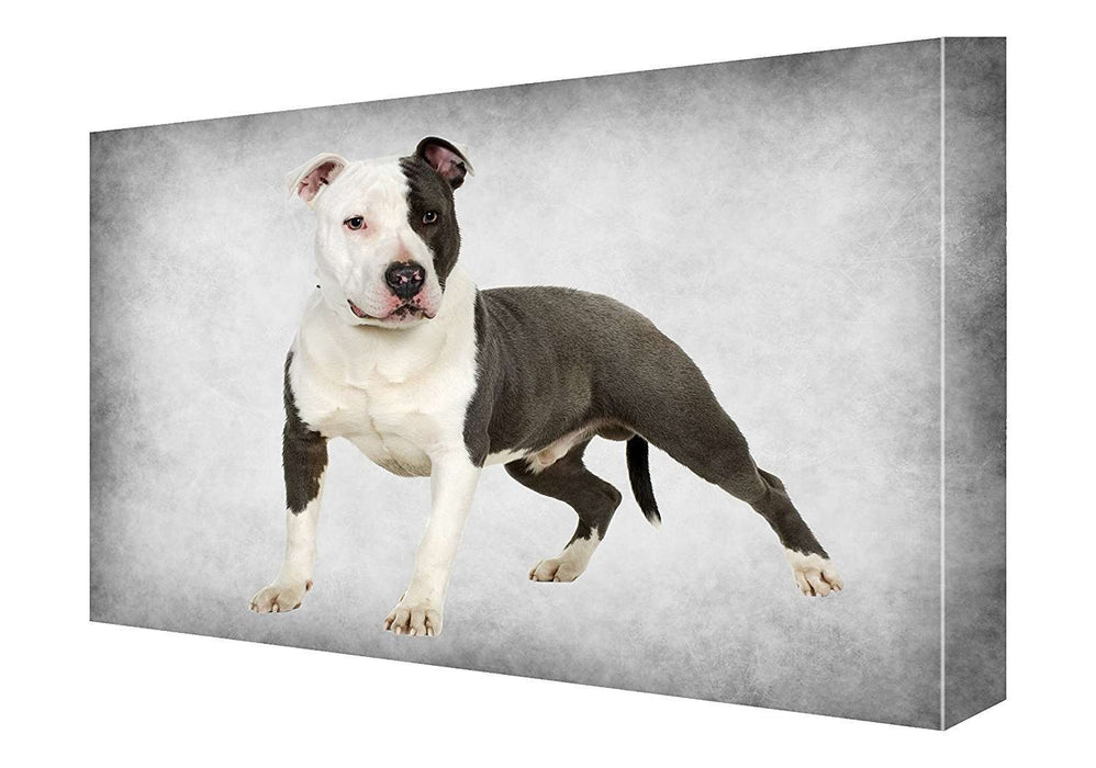 American Staffordshire Terrier Dog Canvas