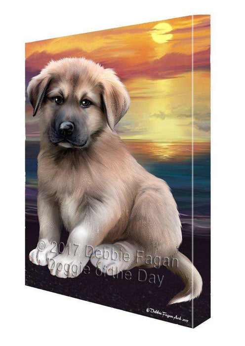 Anatolian Shepherd Dog Canvas Wall Art D373