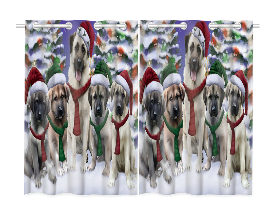 Anatolian Shepherd Dogs Christmas Family Portrait in Holiday Scenic Background Window Curtain