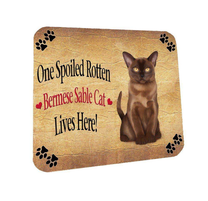 Bermese Sable Spoiled Rotten Cat Coasters Set of 4