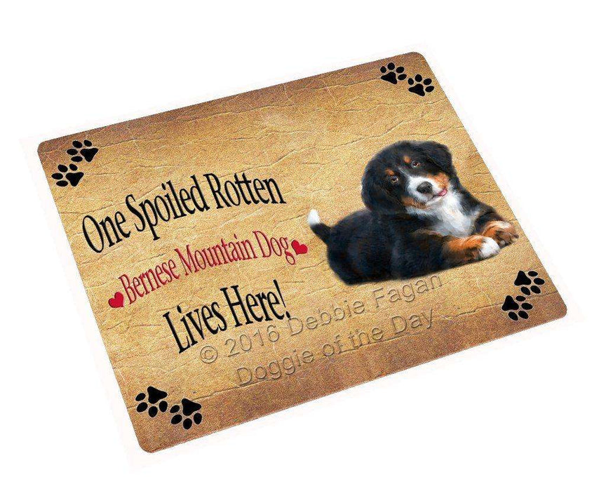 "Bernese Mountain Spoiled Rotten Dog Magnet Mini (3.5"" x 2"")"