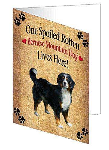 Bernese Mountain Spoiled Rotten Dog Note Card