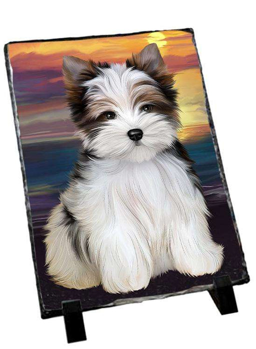 Biewer Terrier Dog Photo Slate SLT51734