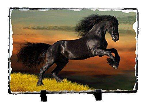 Black Beauty Horse with Scenic Background Photo Slate