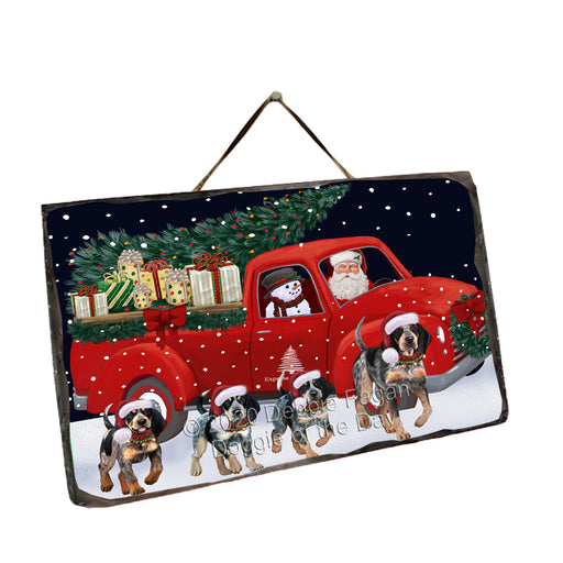 Christmas Express Delivery Red Truck Running Bluetick Coonhound Dogs Wall Décor Hanging Photo Slate SLTH58140