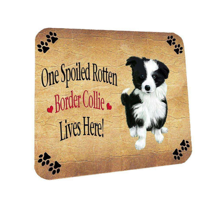Border Collie Spoiled Rotten Dog Coasters Set of 4
