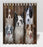 Rustic Border Collie Dogs Shower Curtain