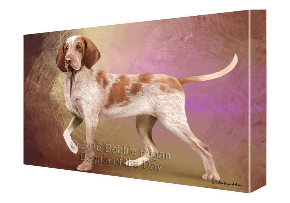 Bracco Italiano Dog Canvas Wall Art CV057