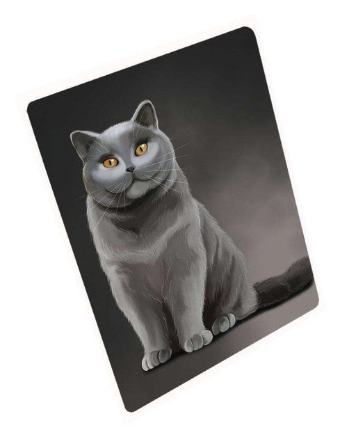 British Shorthair Cat Art Portrait Print Woven Throw Sherpa Plush Fleece Blanket