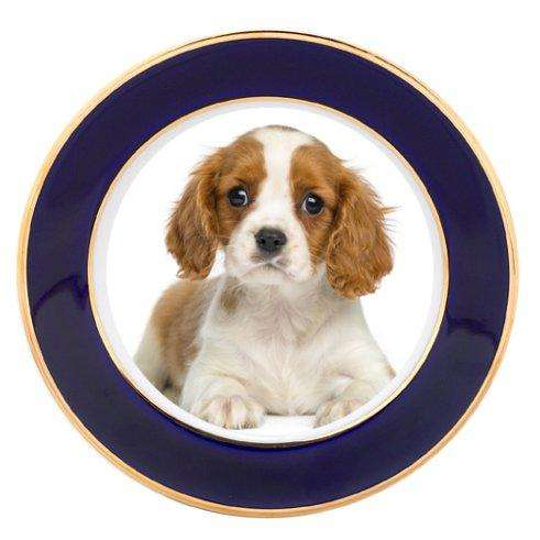 Cavalier King Charles Puppy Dog Porcelain Plate