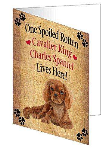 Cavalier King Charles Spaniel Spoiled Rotten Dog Greeting Card