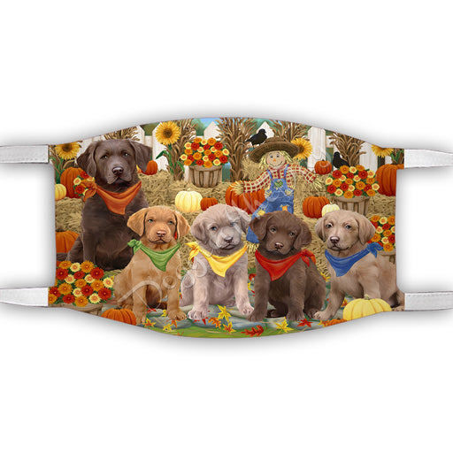 Fall Festive Harvest Time Gathering  Chesapeake Bay Retriever Dogs Face Mask FM48525