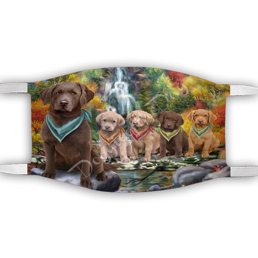 Scenic Waterfall Chesapeake Bay Retriever Dogs Face Mask FM49289