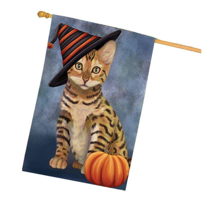Chinese Li Hua Kitten Cat Wearing Witch Hat with Pumpkin House Flag
