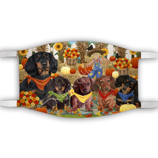 Fall Festive Harvest Time Gathering  Dachshund Dogs Face Mask FM48532