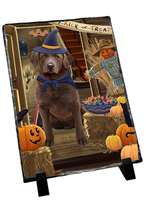 Enter at Own Risk Trick or Treat Halloween Chesapeake Bay Retriever Dog Photo Slate SLT53074