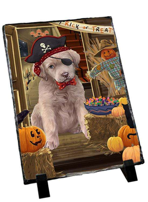 Enter at Own Risk Trick or Treat Halloween Chesapeake Bay Retriever Dog Photo Slate SLT53076