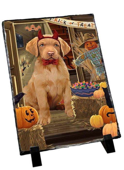 Enter at Own Risk Trick or Treat Halloween Chesapeake Bay Retriever Dog Photo Slate SLT53077
