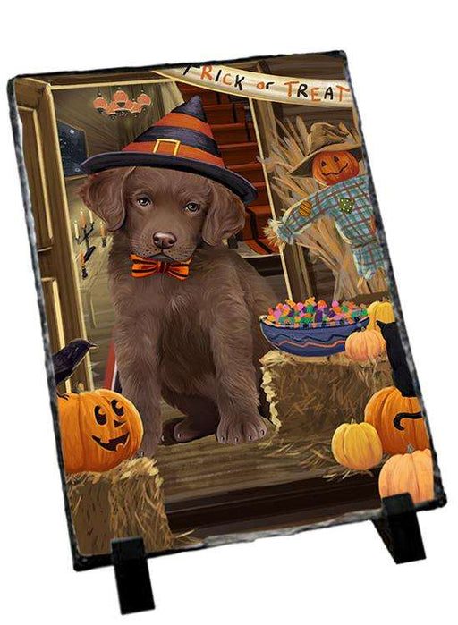 Enter at Own Risk Trick or Treat Halloween Chesapeake Bay Retriever Dog Photo Slate SLT53078