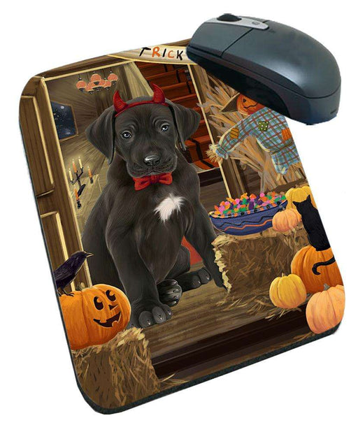 Enter at Own Risk Trick or Treat Halloween Great Dane Dog Mousepad MPD53142