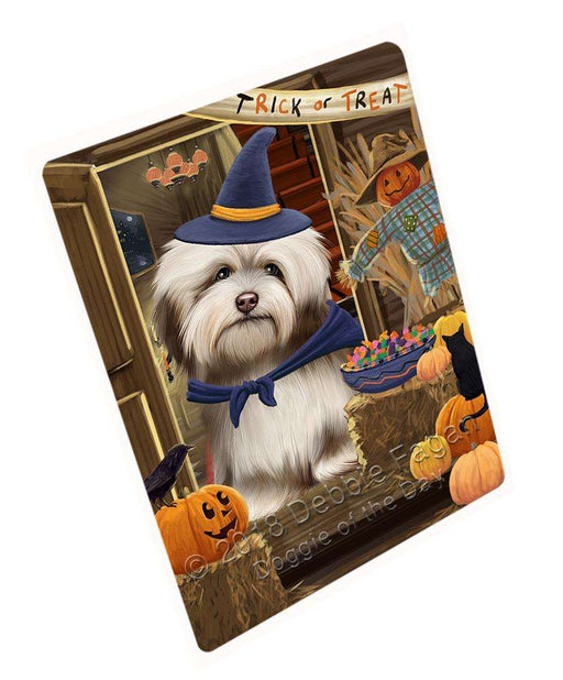 "Enter At Own Risk Trick Or Treat Halloween Havanese Dog Magnet Mini (3.5"" x 2"") MAG63906"
