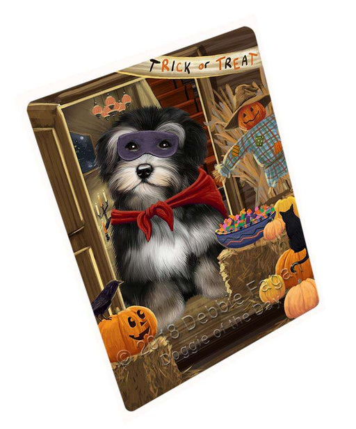 "Enter At Own Risk Trick Or Treat Halloween Havanese Dog Magnet Mini (3.5"" x 2"") MAG63909"
