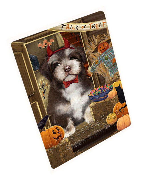 "Enter At Own Risk Trick Or Treat Halloween Havanese Dog Magnet Mini (3.5"" x 2"") MAG63915"
