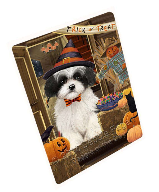 "Enter At Own Risk Trick Or Treat Halloween Havanese Dog Magnet Mini (3.5"" x 2"") MAG63918"