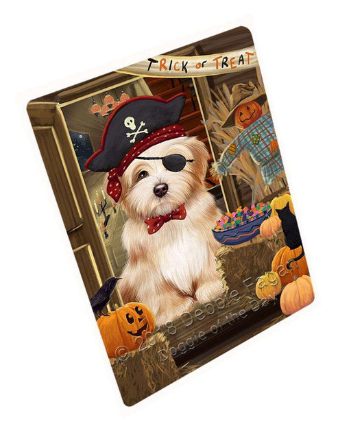 "Enter At Own Risk Trick Or Treat Halloween Havanese Dog Magnet Small (5.5"" x 4.25"") mag63912"