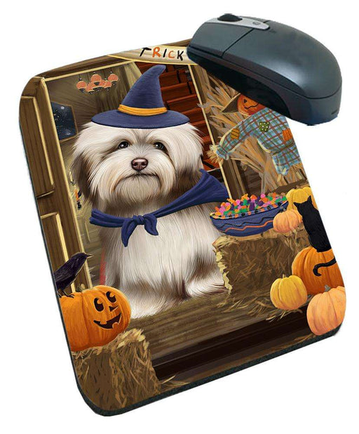 Enter at Own Risk Trick or Treat Halloween Havanese Dog Mousepad MPD53154