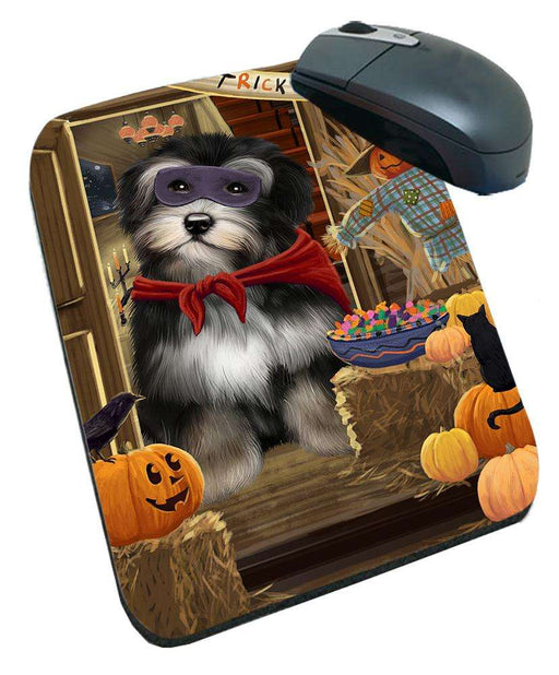 Enter at Own Risk Trick or Treat Halloween Havanese Dog Mousepad MPD53155