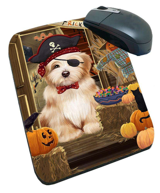 Enter at Own Risk Trick or Treat Halloween Havanese Dog Mousepad MPD53156