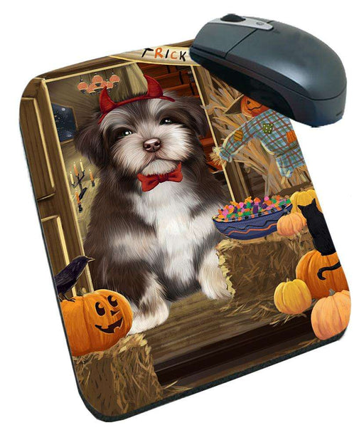 Enter at Own Risk Trick or Treat Halloween Havanese Dog Mousepad MPD53157