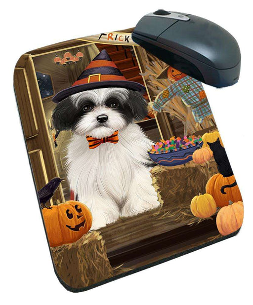 Enter at Own Risk Trick or Treat Halloween Havanese Dog Mousepad MPD53158