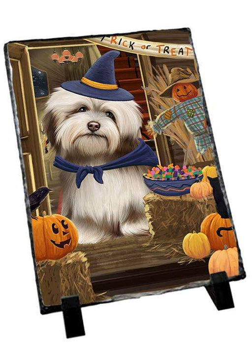 Enter at Own Risk Trick or Treat Halloween Havanese Dog Photo Slate SLT53154