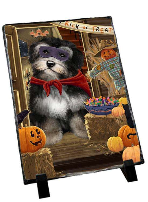 Enter at Own Risk Trick or Treat Halloween Havanese Dog Photo Slate SLT53155
