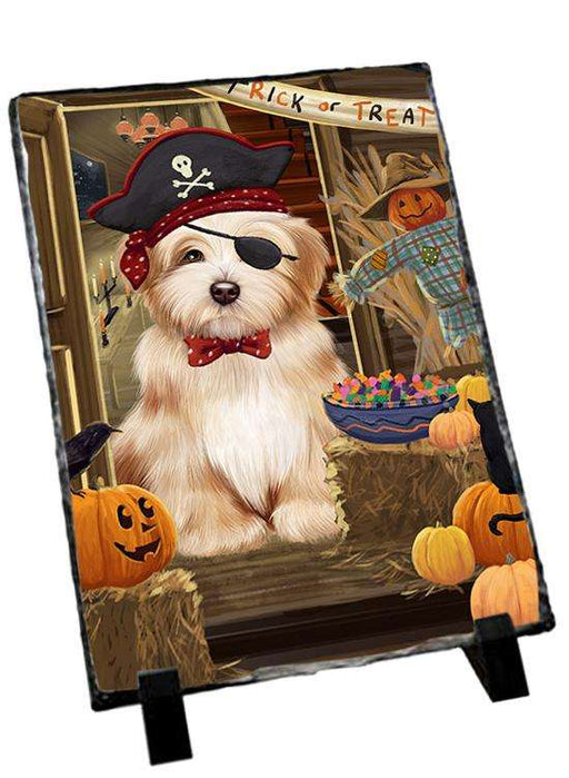Enter at Own Risk Trick or Treat Halloween Havanese Dog Photo Slate SLT53156