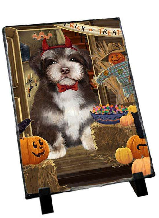 Enter at Own Risk Trick or Treat Halloween Havanese Dog Photo Slate SLT53157