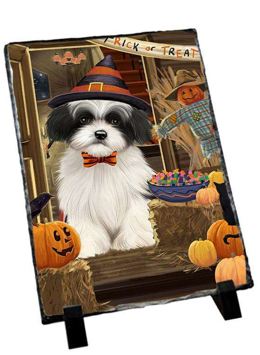 Enter at Own Risk Trick or Treat Halloween Havanese Dog Photo Slate SLT53158