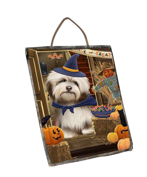 Enter at Own Risk Trick or Treat Halloween Havanese Dog Wall Décor Hanging Photo Slate SLTH53154
