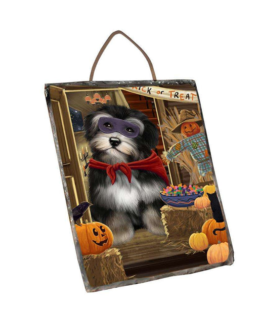 Enter at Own Risk Trick or Treat Halloween Havanese Dog Wall Décor Hanging Photo Slate SLTH53155