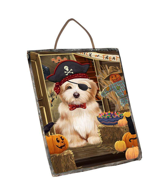 Enter at Own Risk Trick or Treat Halloween Havanese Dog Wall Décor Hanging Photo Slate SLTH53156