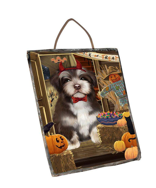 Enter at Own Risk Trick or Treat Halloween Havanese Dog Wall Décor Hanging Photo Slate SLTH53157