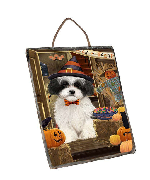 Enter at Own Risk Trick or Treat Halloween Havanese Dog Wall Décor Hanging Photo Slate SLTH53158